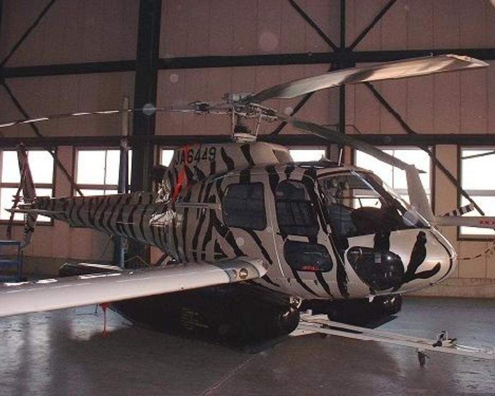 ヘリコプターをゼブラ模様にしましたのサムネイル