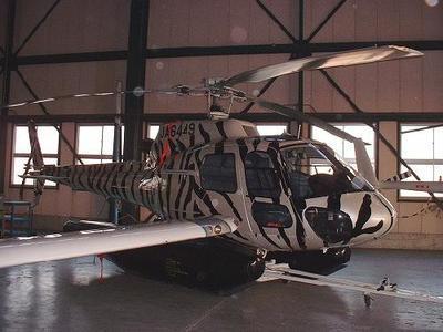 ヘリコプターをゼブラ模様にしました